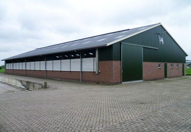 Rundveestal - Agrarische bouw